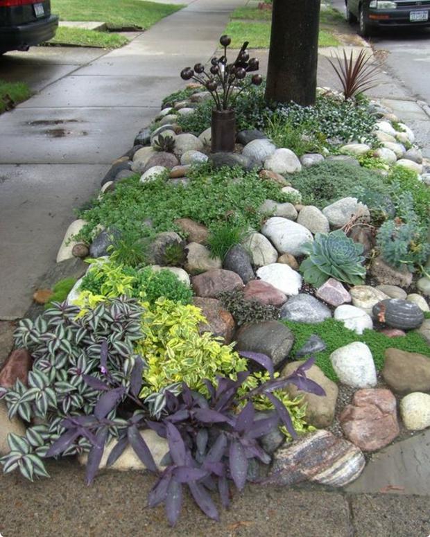 Nei giardini rocciosi le piante grasse ed i fiori regnano - Immagini giardini rocciosi ...