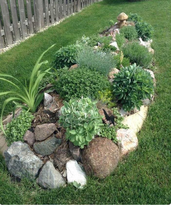 Super Nei giardini rocciosi le piante grasse ed i fiori regnano sovrani PB56